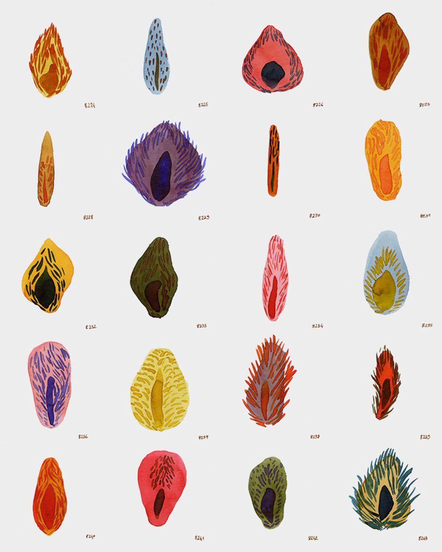 Louise Duneton                30 x 24 cm encre sur papier